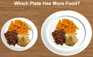 which plate has more food