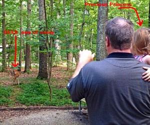 Grand daughter seeing her first deer at Monte Sano State Park in Huntsville AL