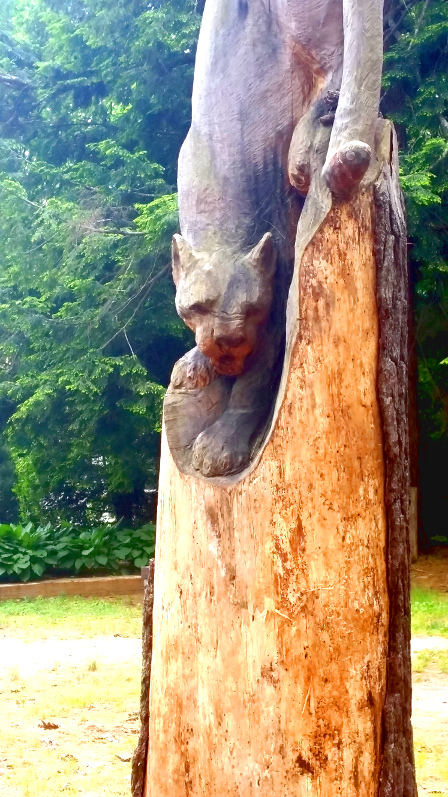 Cougar Carving in a pine stump