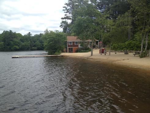 PineWood-lake-view