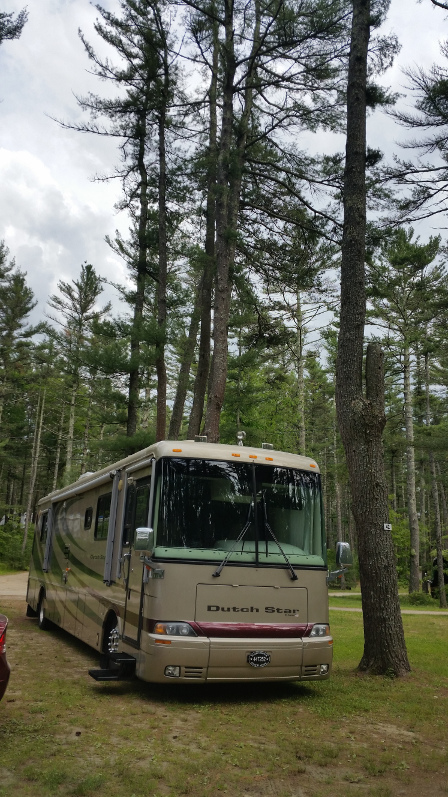 Pinewood-Camper-site