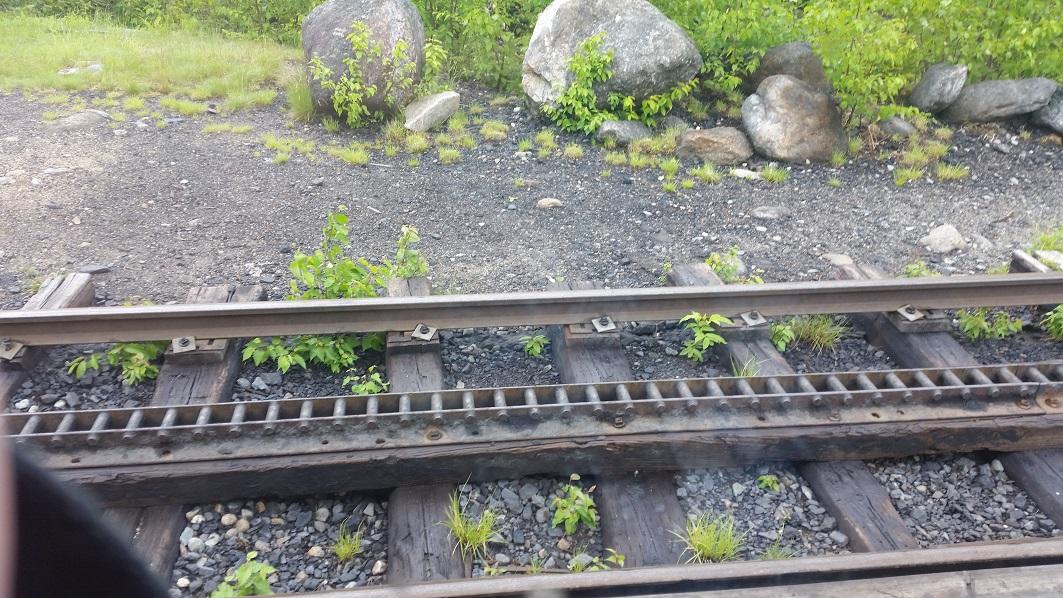 cog-tracks-