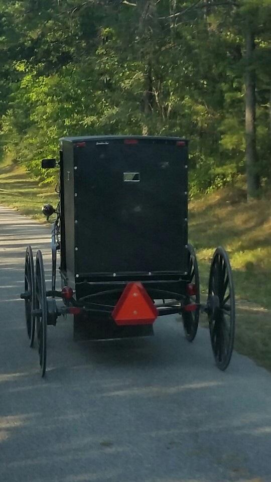 Mennonite-carriage