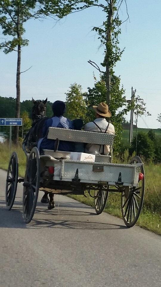 Mennonite-work-carriage